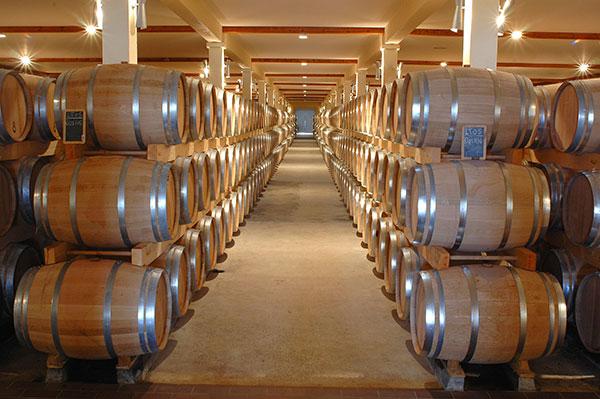 Foto - Barris de carvalho para a fermentação maloláctica e armazenamento
