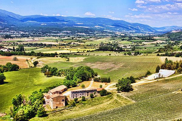 Provence é o lar do vinho rosé feito com as uvas grenache, syrah e mourvèdre