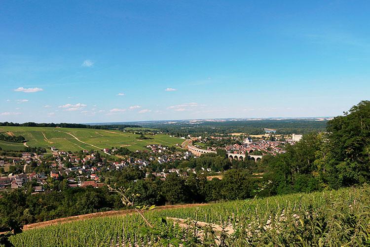 Vale do Loire é o berço da uva sauvignon blanc