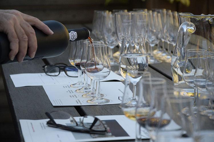 Degustação de um vinho começa com o sentido da visão